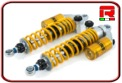 KIT ASSETTO OHLINS