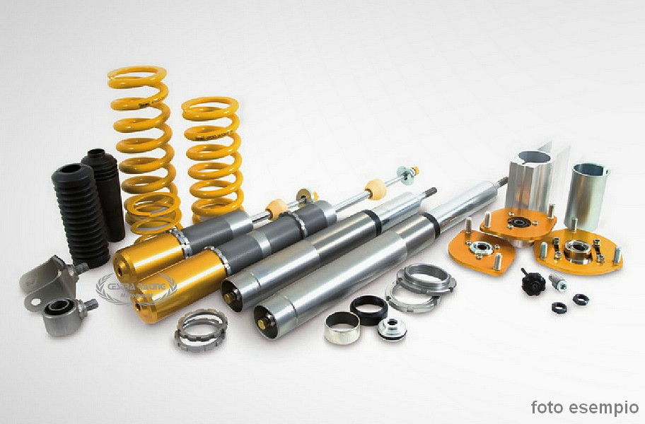 Kit OHLINS Renault Clio RS ( in ultimazione )